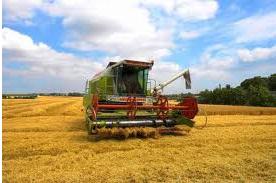 شراء Agricultural Products