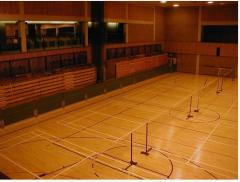 Floor coatings for sport