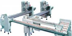 Horizontal Packing Equipment