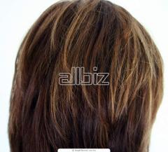 الشعر المستعار