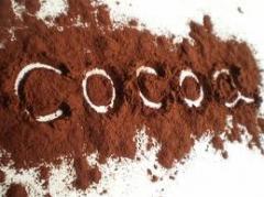 مسحوق الكاكاو